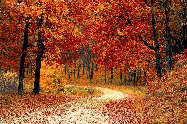 Gearing Up For Fall? Here's Why Financial Planning Should Be A Priority